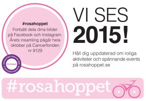 VISES2015