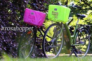 katilock-rosa-hoppet